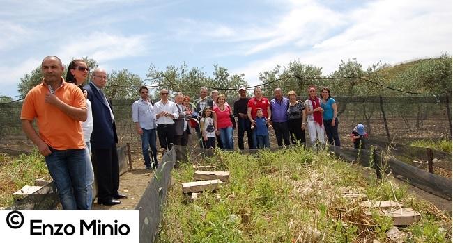 Il campo di elicicoltura a Calamonaci Foto Minio (1)