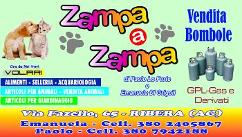 Zampa & Zampa