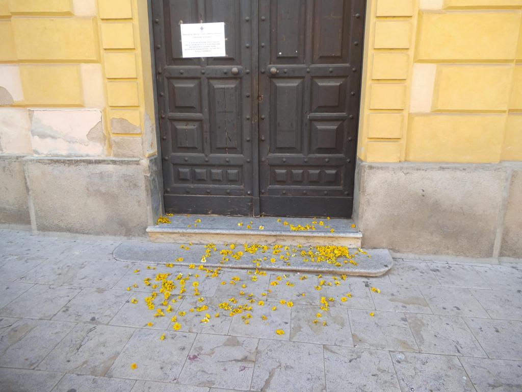 fiori di maggio davanti al municipio
