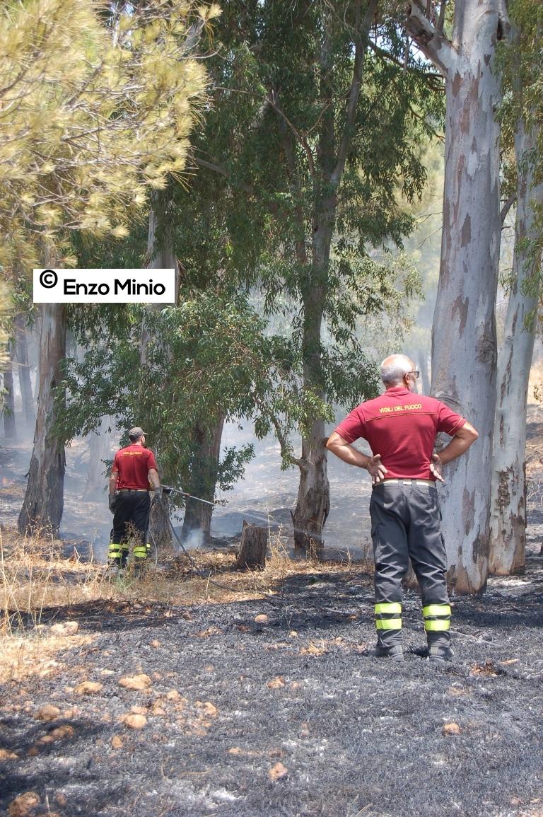 Ribera L'incendio del bosco del calvario