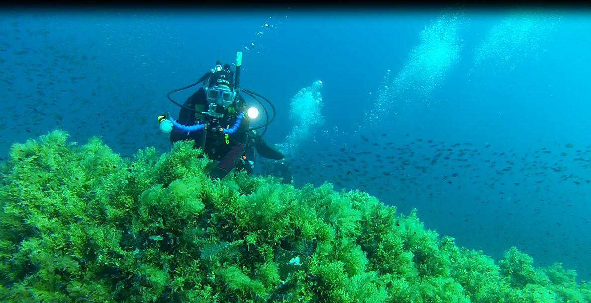 isola ferdinandea 3