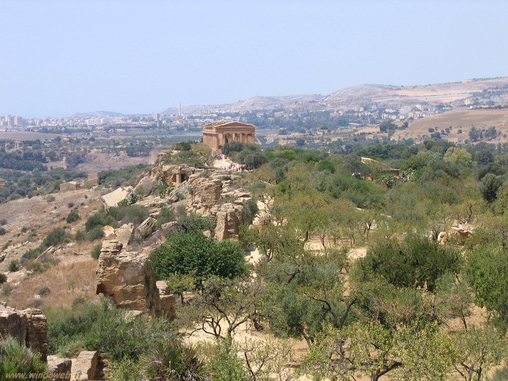 valle_dei _templi tra mndorli ed erba alta