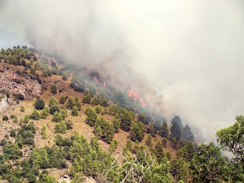 Burgio incendio bosco 3