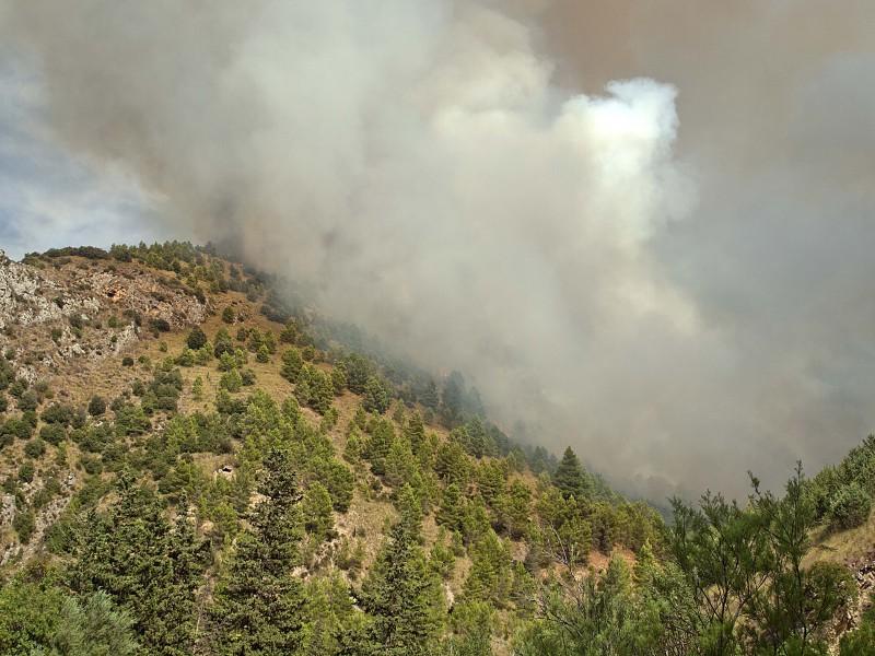 Burgio incendio bosco 5