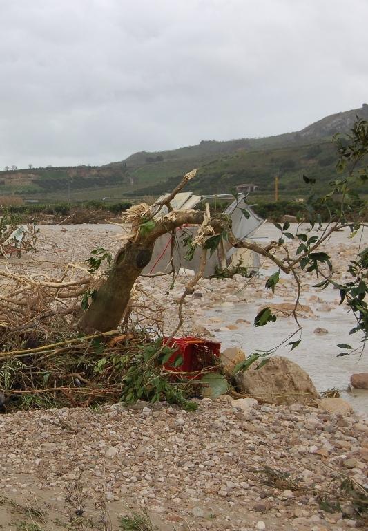 Fiume Verdura - Scomparsi gli agrumeti
