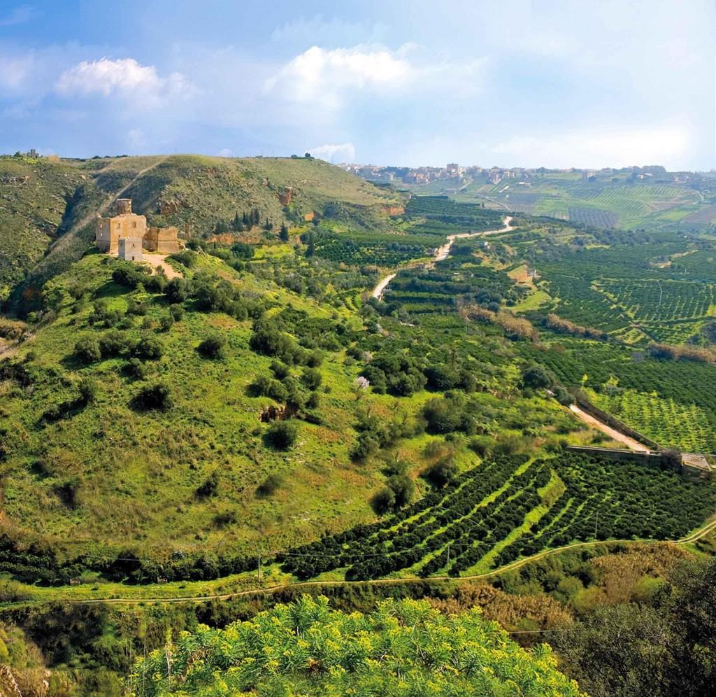 castello Poggiodiana ed agrumi