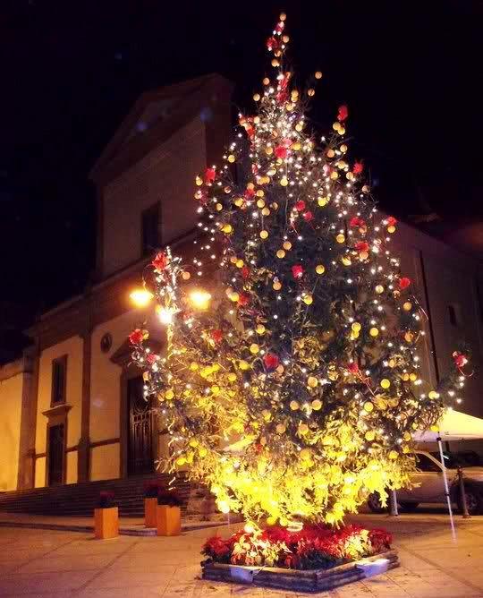 albero di Natale in piazza a Ribera