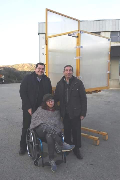 elevatore per disabili 1