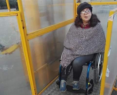 elevatore per disabili 2