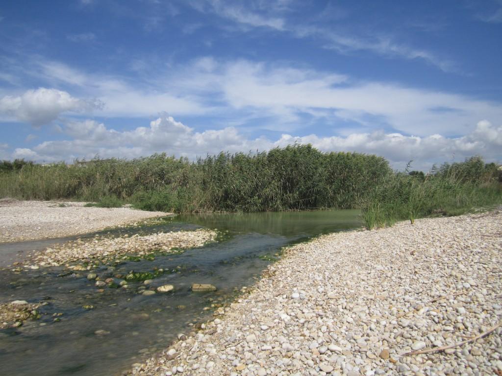 fiume Magazzolo foce