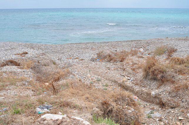 Seccagrande spiaggia con erbacce