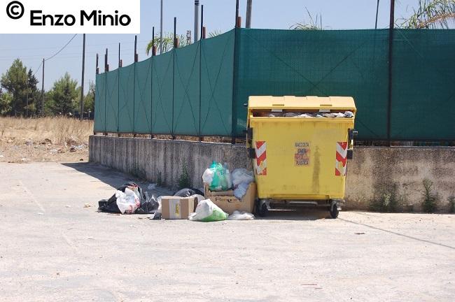Rifiuti strada provinciale 33 FOTO MINIO