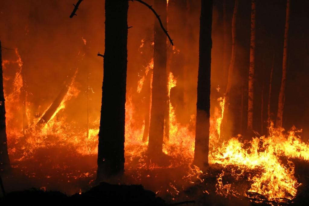 incendio notturno Monte Sara