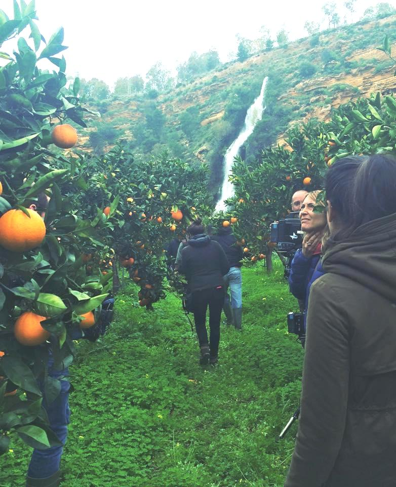 irrigazione agrumeti Verdura