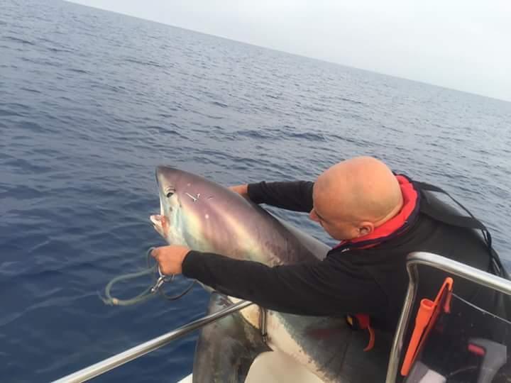 squalo Seccagrande 1