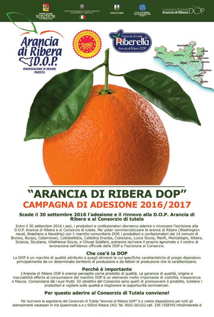 arance manifesto