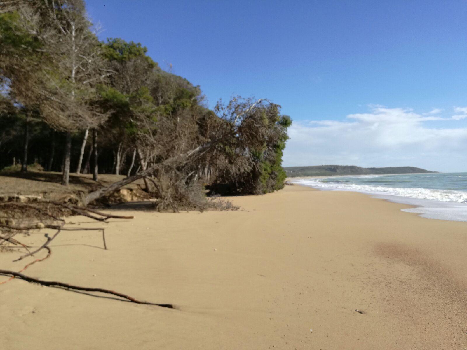 Eraclea Minoa torna la sabbia 1
